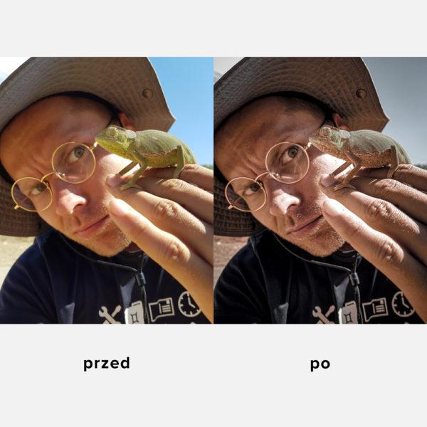 filtr-preset-podrozniczy-podroznik-z-kameleonem